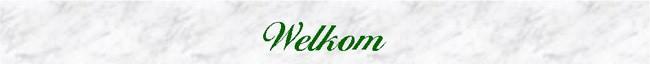 Banner welkom - Groot