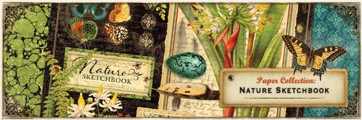 161029S-nature-sketchbook - Groot